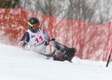 2014ジャパンパラアルペンスキー競技大会    写真/阿部謙一郎