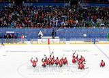 ソチ2014パラリンピック  アイススレッジホッケー    写真/竹見脩吾